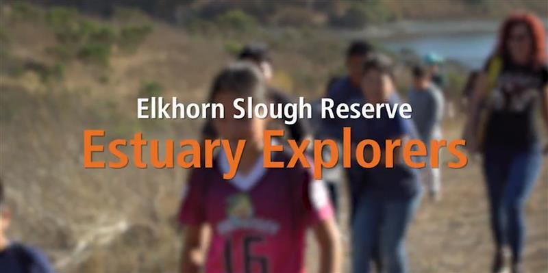 LEARN MORE ABOUT ONE OF OUR AFTER SCHOOL PROGRAMS, THE ESTUARY EXPLORER'S CLUB (Video)