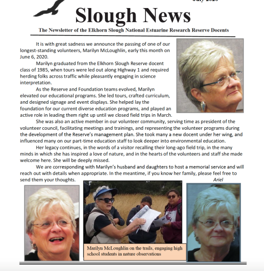 Marilyn McLoughlin Passing on Slough News